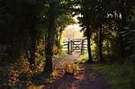 gate-155112_150